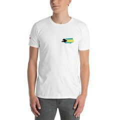 64000 Unisex Softstyle T-Shirt