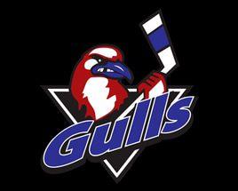 Long Island Gulls